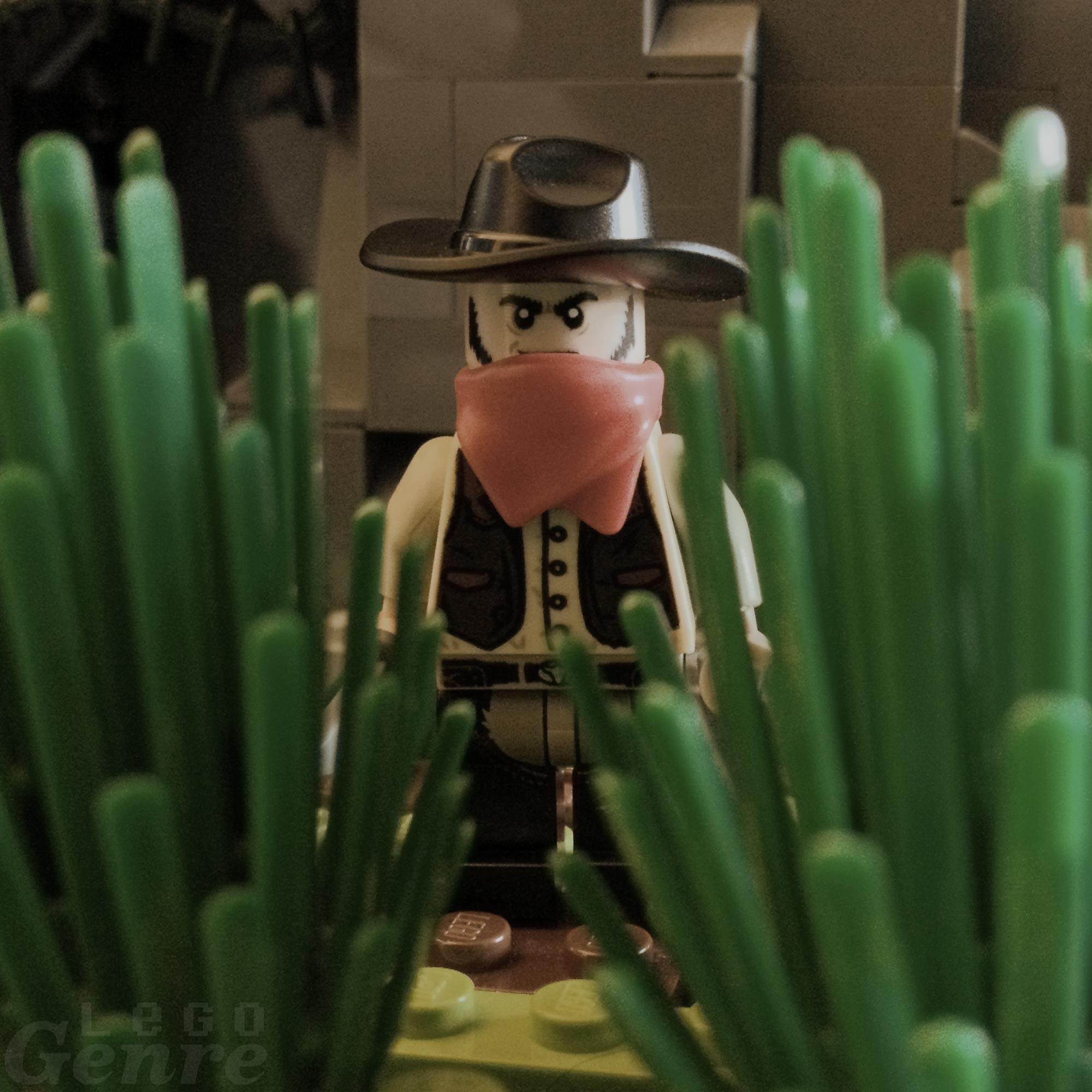 LegoGenre 00317: Bush Bandit