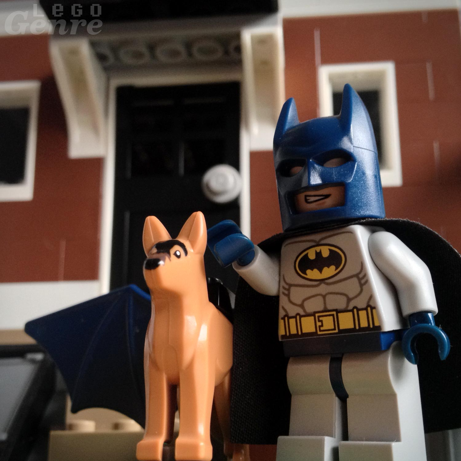 LegoGenre 00361: Batman and Ace