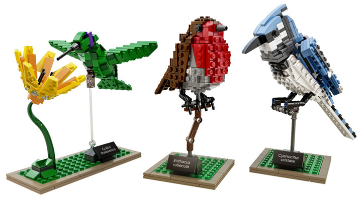 Lego Ideas Birds 21301