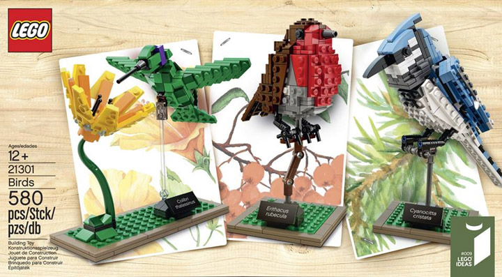 Lego Ideas Birds 21301 Box