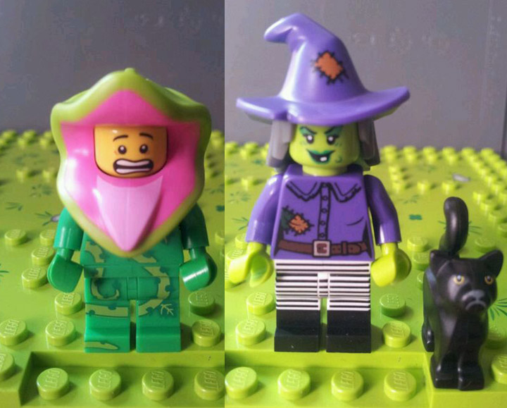 Lego Collectible Minifigures Series 14, Witch, Plant