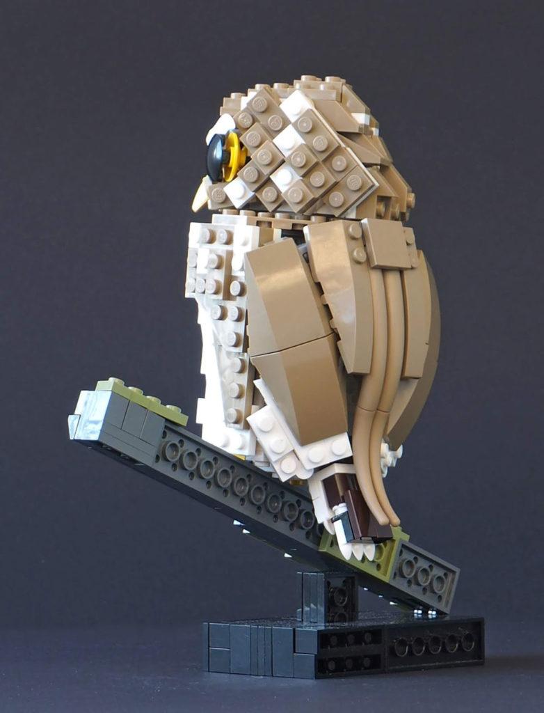 Eurasian Pygmy Lego Owl Backside