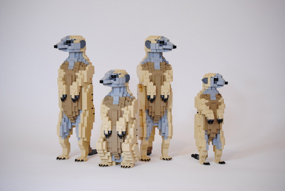 These Life-sized Lego Meerkats Are Always Standing Up