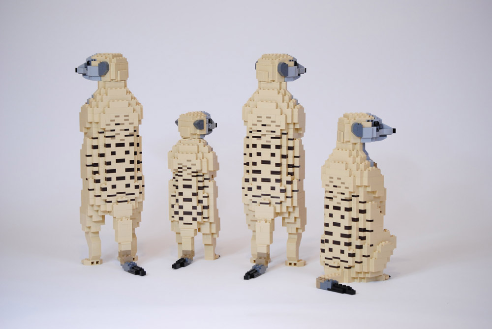 These Life-sized Lego Meerkats Are Always Standing Up Backside and Patterns