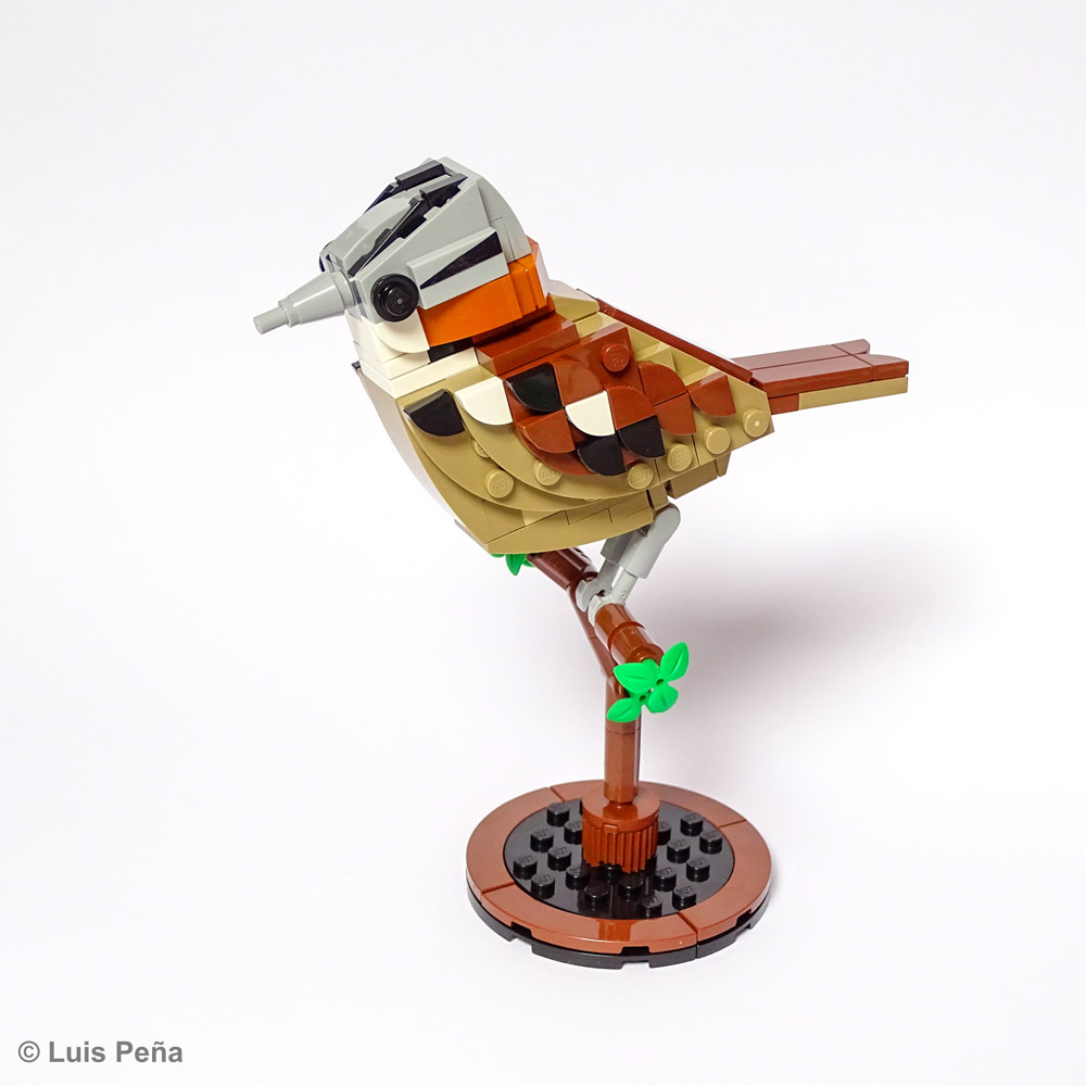 The Lego Rufous-collared Sparrow / Chincol